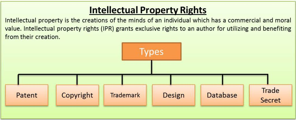 Save Archives from Instagram Intellectual Property Rights