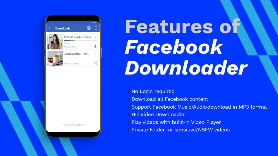 AhaSave Facebook Downloader Features